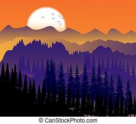 paysage, paysage, coucher soleil, lumière