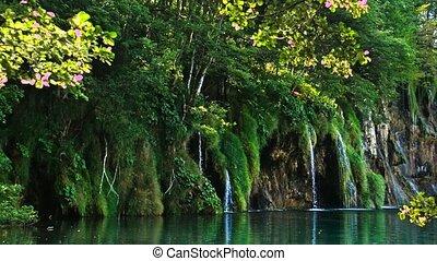 paysage, pittoresque, parc national, lacs, plitvice, chutes ...