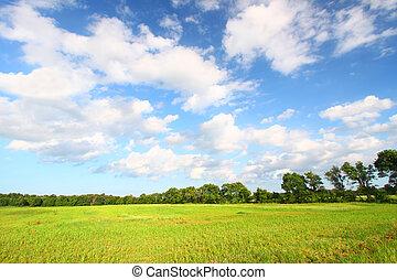 paysage, prairie, midwest