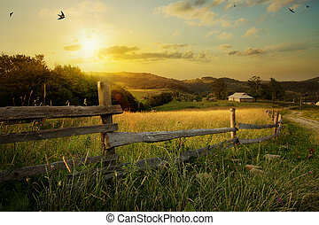 paysage., rural, art, champ herbe