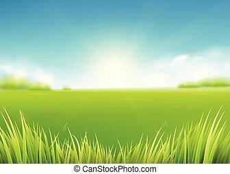 paysage, soleil, pré, fond, nature, rayons, herbe, ...