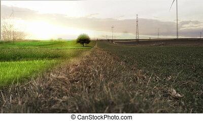 paysage, surréaliste