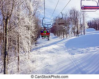 paysage, timberline, autour de, virginie occidentale, recours, ski