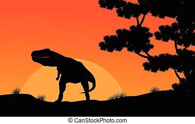 paysage, tyrannosaurus, silhouette, coucher soleil