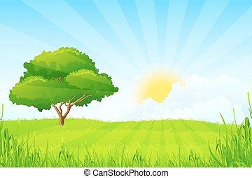 paysage vert, à, arbre