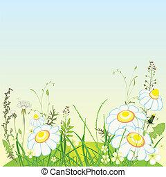 paysage vert, fleurs, et, herbe