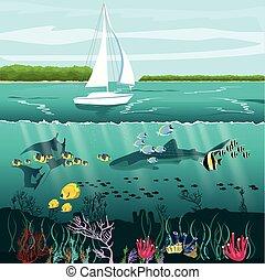 paysage, vie sous-marine, yacht, fente, vue, marin,...