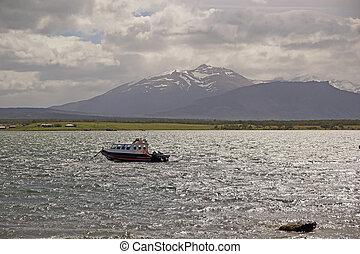 paysage, vue, depuis, puerto natales, dans, patagonia, chili