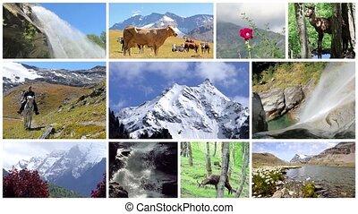 paysages, alpes, montage.