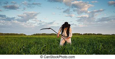 paysan, mows, herbe, dans, les, champ