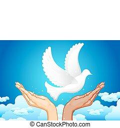 paz, mãos