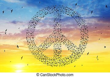 paz, sky., símbolo, voando, pôr do sol, formação, pássaros