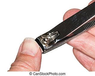 paznokieć, makro, cięcie, odizolowany, kciuk