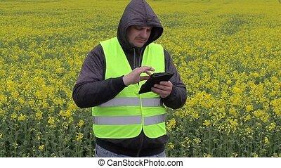 pc, jaune, tablette, paysan