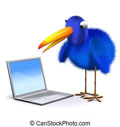 pc, laptop, bluebird, 3d