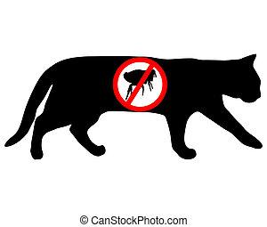 pchła, zabroniony, kot