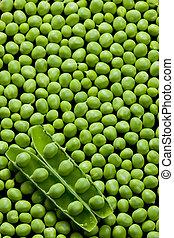 pea pod with peas