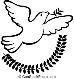 Peace Dove isolated on a white background.