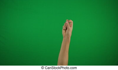 Peace hand gesture on green screen background
