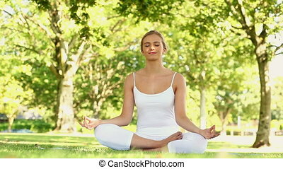 Peaceful blonde doing yoga in the park
