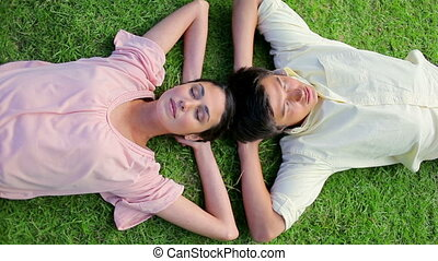 Peaceful couple napping together on the grass