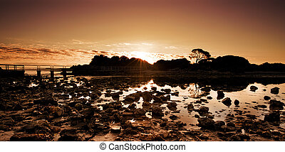 Peaceful Creek Sunrise