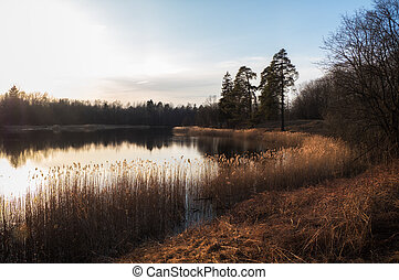 Peaceful evening landscape with a lake in early spring