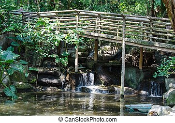 Peaceful forest with wood bridge