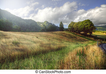 Peaceful rural landscape in Azores, Portugal - Peaceful...