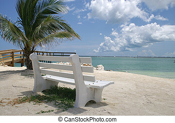 Peaceful white park bench overlooking the ocean in the...