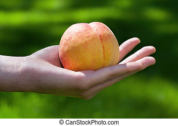 Peach in hand