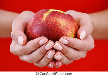 peach in woman hands close up
