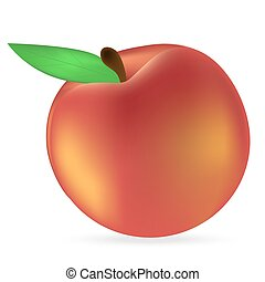 peach on a white background