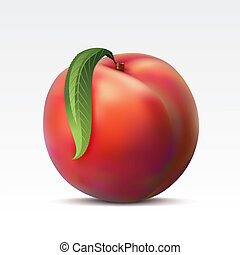 Ripe peach with a green leaf on a white background