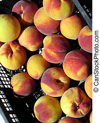 Peaches in box directly from a farmhouse in Tuscany, Italy