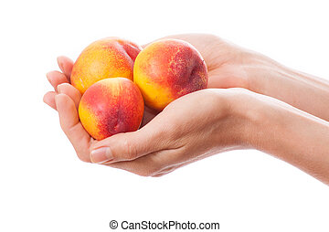 peaches in hand, isolated on white - peaches in female hand,...