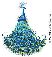 Peacock.  - Bird vector background