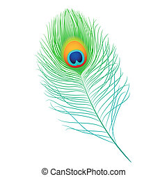 Peacock feather - Detailed vector illustration of a peacock...
