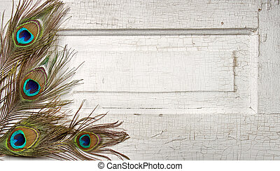 Peacock feathers on vintage door - Peacock feathers on a...