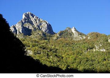 peak in Valley of Aspe, Pyrenees, France