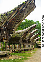 A row of peaked roofs is seen in this traditional Tana Toraja village near Rantepao, Sulawesi, Indonesia