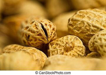Peanut Closeup Abstract