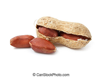 peanut fruits dried legume isolated