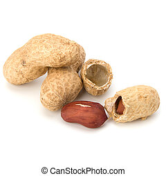 Peanut isolated on white background