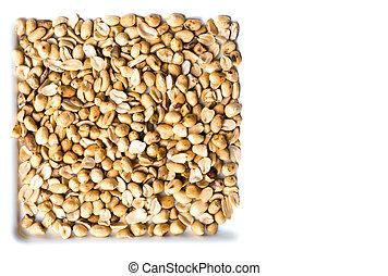 Peanut on isolated white background.
