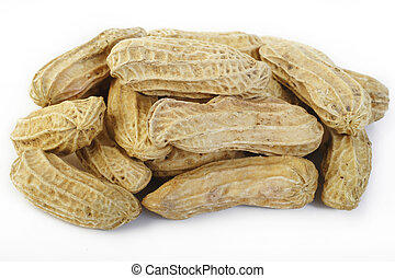 Peanut on white background