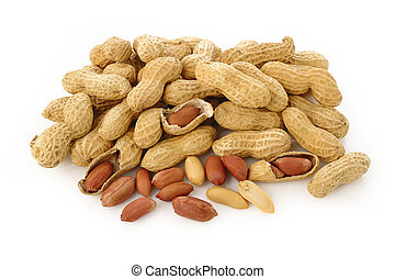Peanut seed on white background