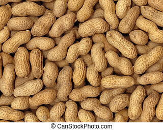 Peanuts Background - Pronounced texture of peanuts, the high...