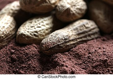 peanuts in cacao