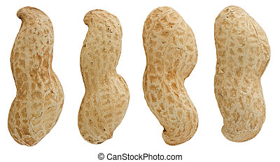 Peanuts isolated on white background.